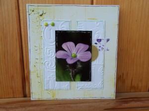 fleur dans printemps 2013-01-06-caddie-scrap-300x225