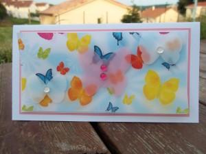 et encore des papillons 2013-06-26-cardlift-c-et-s-300x225