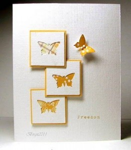 papillons 21juille11-263x300